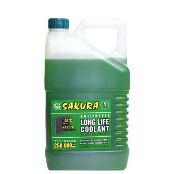 Антифриз Sakura Green 5kg